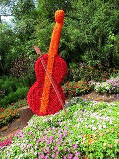 ...for music lovers #garden #music #guitar