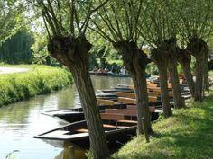 """Die Sumpfregion Marais Poitevin an der französischen Westküste wird wegen seiner Kanäle auch """"La Venise verte"""" genannt – das grüne Venedig."""