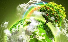 Mediul natural, Mediul antropic Oamenii au trăit de la început în mediul natural, format din plante, animale, sol, aer, apă, roci, apărut de milioane de ani. Mai târziu a apărut şi mediul antropic, alcătuit din instituţii social-economice şi creat de fiinţa umană pe baza utilizării ... Dandelion, Herbs, Creative, Flowers, Africa, Sun, Plant, Geography, Dandelions