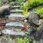 Awesome DIY Garden Steps and Stairs Ideas Rock steps and stones in the garden Diy Garden, Garden Cottage, Garden Paths, Landscaping With Rocks, Garden Landscaping, Landscaping Ideas, Walkway Ideas, Natural Landscaping, Patio Ideas