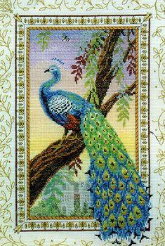 Набор для вышивания Renaissance Peacock (Павлин Эпохи Возрождения). Панно.