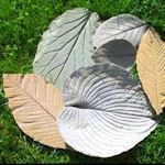 How To Make Concrete Leaves