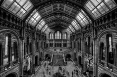 Natural History by Chris Muir on 500px