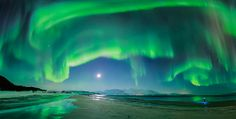 An aurora over Steinsvik beach in Norway. I would love to see the aurora borealis. Aurora Borealis, Beautiful Sky, Beautiful Pictures, 4 Image, Image Search, Astronomy Pictures, Jolie Photo, Milky Way, Night Skies