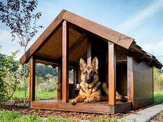 Hundehütte Hundehaus *Baster* 120x80x100cm Vollisolierte Echtholz