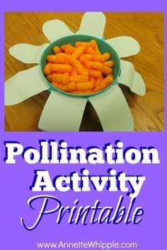A hands-on science activity that really digs into pollination for children.