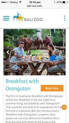Bali Zoo, Breakfast with Orangutans $200 for a family of four