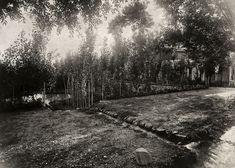 A garden at Bahá'u'lláh's house in Shimran.
