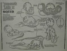 Don Bluth Dragons Lair II of The Squid Animation Model Sheet Drawing Cel | eBay