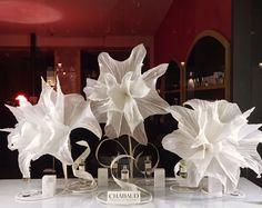 vitrine anais rheiner maryse dugois d i v e r s pinterest fleur et affichage. Black Bedroom Furniture Sets. Home Design Ideas