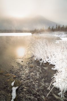 Vermillion Hot Springs in Winter, Banff NP. - These hot springs at vermillion lakes (Banff National Park) ensure there are stretches of open water in Winter. Photographed in a cold snap when weather was getting down to -30c.