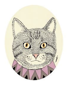 Animal Portraits by Indi Maverick, via Behance