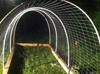 Pet Bird Cage Ideas Chicken Coops New Ideas