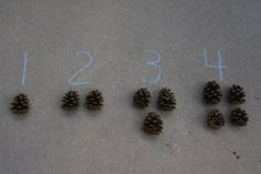 a greatoutdoor math activity for preschoolers – numbers and pinecone counters.