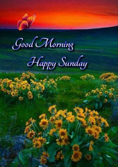 Happy Morning Quotes, Good Morning Happy Sunday, Sunday Love, Blessed Sunday, Sunday Quotes, Good Morning Greetings, Good Morning Gif Images, Corporate Gifts, Blessing