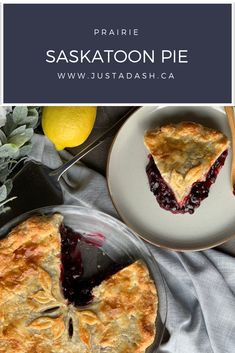 Saskatoon berries (or Juneberries if you're in the USA) are a delicious little berry well known in our prairie provinces that make the most delicious desserts, tarts and jams! This Saskatoon Pie is absolutely delicious topped with vanilla ice cream! Amish Recipes, Sweet Recipes, Baking Recipes, Dessert Recipes, Easy Delicious Recipes, Delicious Fruit, Saskatoon Berry Recipe, Berry Tart, Cake Bakery