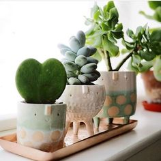 Ceramics ideas cactus Style cute planters Fantastic Free of Charge Ceramics ideas cactus Style cute planters - J A D E & S T O N E : handmade ceramic succulent planter set Excited to present my new creations of this week Product Description Diy Planters, Ceramic Planters, Garden Planters, Tall Planters, Modern Planters, Outdoor Planters, Concrete Planters, Hanging Planters, Clay Planter