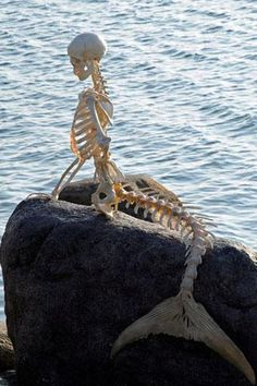 Mermaid skeleton... this would be so cool  to set by a pool, pond or lake. It'd be easy to make a fake rock if needed.