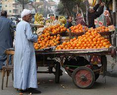 The Tangerine Guy  Swamibu