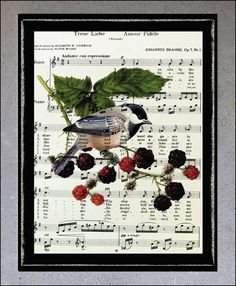 Printed, stencil and pencil drawing on sheet music