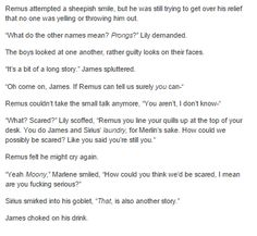 the marauders part 2 - about how the order finding out about Remus being a werewolf