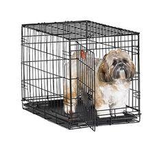 141 besten Favorite Dog Products Bilder auf Pinterest ...