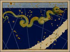 Johann Bayer. Serpens Constellation, Uranometria. 1603.
