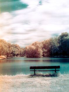 """""""lonely bench"""" - i wonder what thoughts would roam your mind while sitting on this bench ?"""