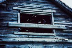 Vernagelt: dieses Fenster in einem Walfängerschuppen am Eismeer  ... #fenster #eismeer