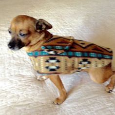 Fleece Coat for Small Dog Coffre Brown Tan by BloomingtailsDogDuds