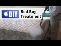 Fleas: The undesirable visitors in your home Bed Bugs Treatment, Diy Bed, Step Guide, Fleas, Mattress, Rid, Pest Control, Home, Videos