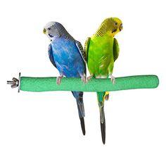 Perch for Birds Price Compare