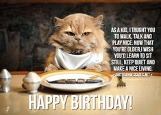 Funny Birthday Wishes & Funny Birthday Quotes: Funny Birthday Messages Happy Birthday Wishes Messages, Funny Wishes, Birthday Poems, Birthday Wishes For Friend, Birthday Wishes Quotes, Funny Messages, Happy Birthday Cards, Funny Birthday Message, Cute Puppy Names