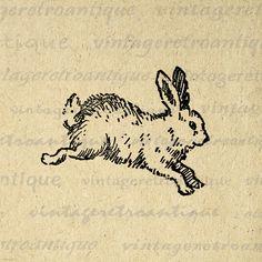 Cute Bunny Printable Image Digital Rabbit Illustration Download Graphic Vintage Clip Art for Transfers Making Prints etc HQ 300dpi No.2382 – Vintage Retro Antique