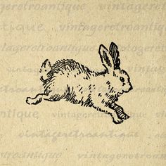 Cute Bunny Printable Image Digital Rabbit Illustration Download Graphic Vintage Clip Art. High quality printable digital graphic clip art. This high resolution digital artwork is excellent for making prints, iron on transfers, tote bags, papercrafts, and much more. Personal or commercial use. This graphic is large and high quality, size 8½ x 11 inches. Transparent background PNG version included.