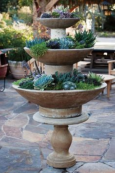 tiered planter with succulents....nicely done  by find the right bowl containers and stacking with flipped pots ..luv