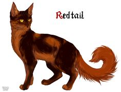 My name's Redtail. I'm brave, loyal, and a fast thinker. I'm always ready to protect LionClan. Played by me!!