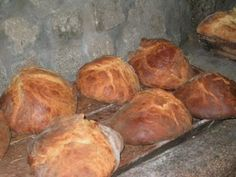 Aldeia Da Reigada: Folar da Páscoa [Bolo de Azeite e Ovos]