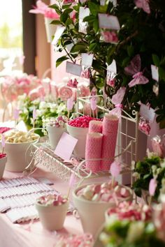 I like the idea of painting pots white and filling them with treats. Springtime Butterfly Garden Dessert Table.