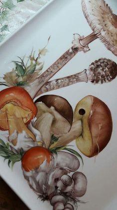 1172 fantastiche immagini su frutta 9344619cc7e7