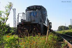 A beleza de uma locomotiva !