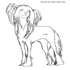 Chinese Crested Dog Line Art