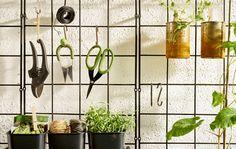 Praktischer Wandgarten