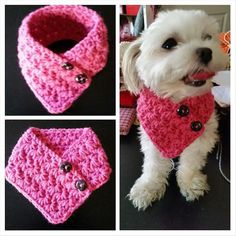 Small Dog Crocheted scarf, Dog neck warmer PINK Colors fits most S or M dogs – Toys Ideas Crochet Dog Clothes, Crochet Dog Sweater, Pet Clothes, Dog Crochet, Dog Clothing, Dog Sweater Pattern, Small Dog Clothes, Crochet Scarves, Crochet Hats
