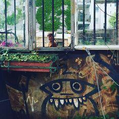 urban kraut's #GreenFavs  #FreakyFaceKraut seen @ Sonnenburger Straße, #Berlin Hier posten wir auch:  #urbangardening #urbangarden #urban #urbankraut #citykraut #gardening #coolgardening #gardening #urbanfarming #cityfarming