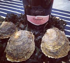 #Oysters and #Fantinel #OneAndOnly #Rosè. Could #Thursday be more #special?   #MercatoMetropolitano #London #Wine #WineLover #Food #Foodporn #Bubbles #Elegance #Classy #ItalianWine