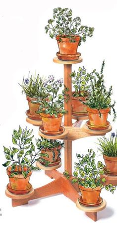Garden Projects: How to Make a Nine-Pot Plant Stand - Popular Woodworking Magazine Woodworking Lamp, Popular Woodworking, Woodworking Projects, Intarsia Woodworking, Woodworking Store, Woodworking Workshop, Woodworking Techniques, Teds Woodworking, Diy Wood Projects