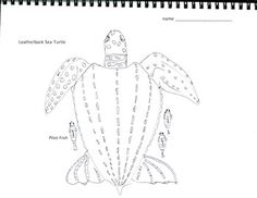 Art is ... Art & Math Coloring Leatherback Sea Turtle (2 pages)