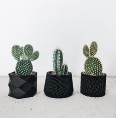 3 mini black ebony wood planters set of Pots / Planters Design Hygge printed in Wood for succulents cactus air plant ! gift for her him - Modern Black Planters, Wooden Planters, Indoor Planters, Planter Pots, Cactus Planters, Hygge, Noir Ebene, Cactus Print, Minimalist Scandinavian