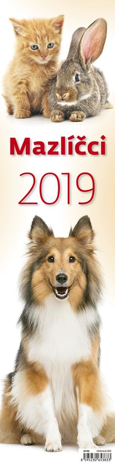 Nástěnný kalendář - vázanka Mazlíčci 2019 Teddy Bear, Movies, Movie Posters, Animals, Art, Art Background, Animales, Film Poster, Animaux